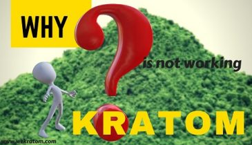 Why Your Kratom Is Not Working?