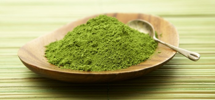 A Complete Guide for Beginners About Green Malay Kratom 1
