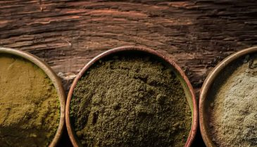 What You Should Know About High-Quality Kratom Vendors