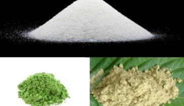 Phenibut-Kratom: The Dream Combo of Consumers