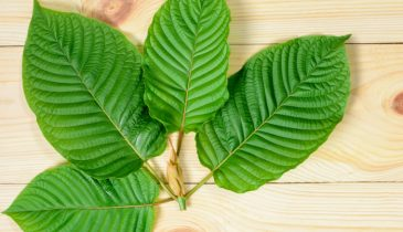 Tips on Finding the Places to Buy Kratom Near You