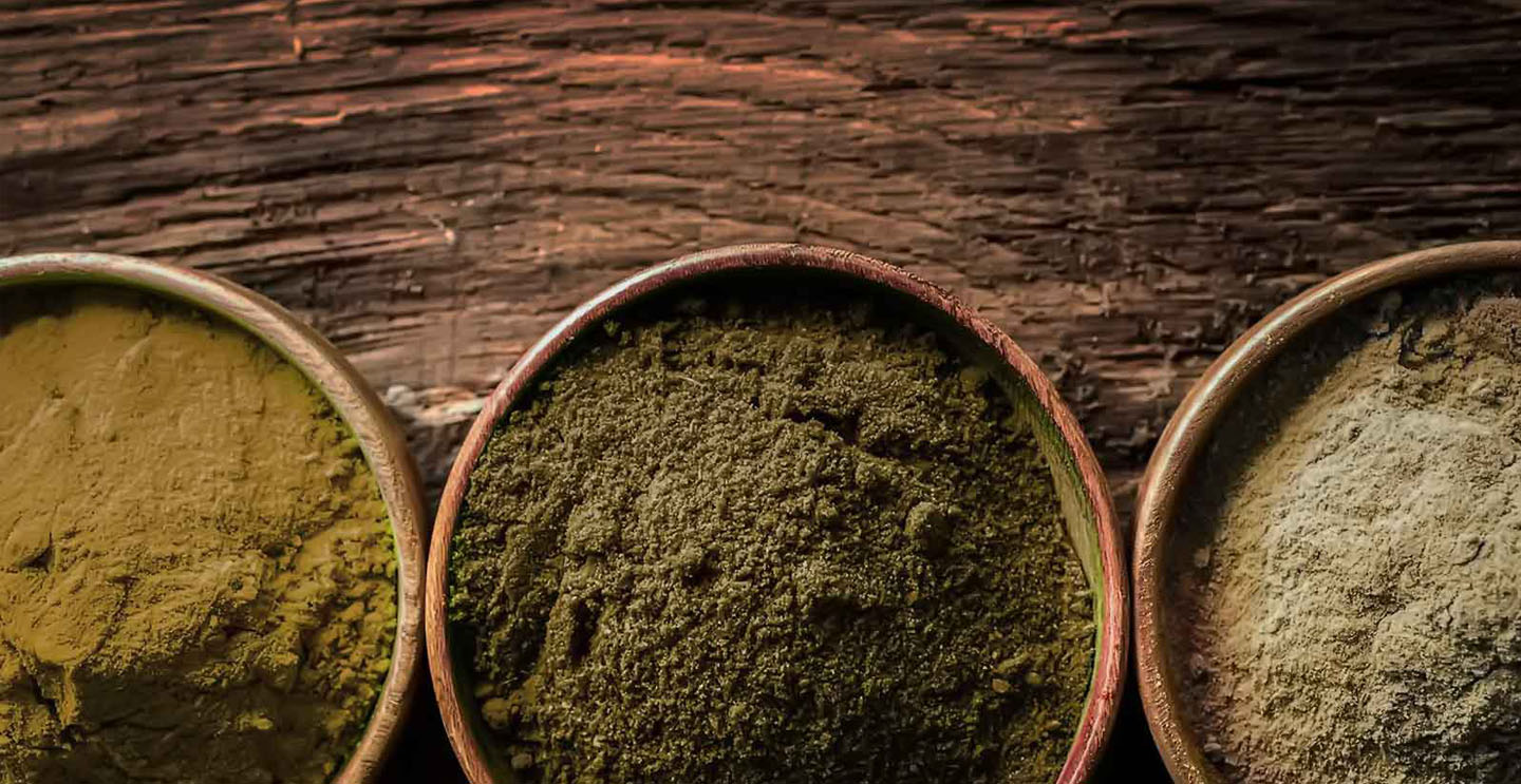 Extensive Guide on Sumatra Kratom Strains and Usage