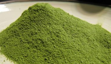 These Kratom Vendors Dominated the 2017 Online Kratom Market
